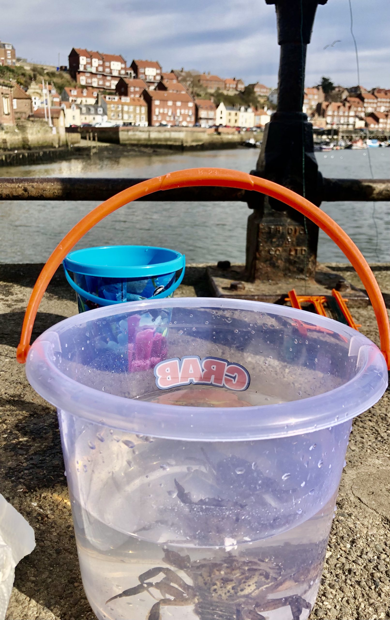 Crabbing Whitby