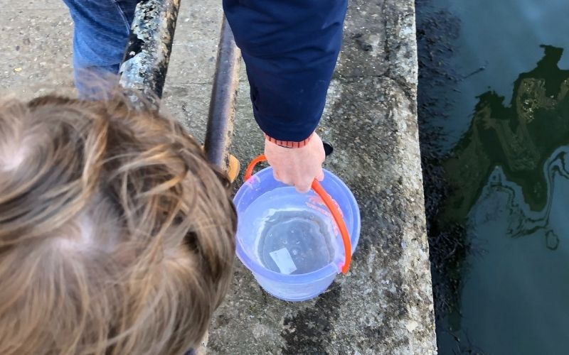 Collecting water for Whitby crabs