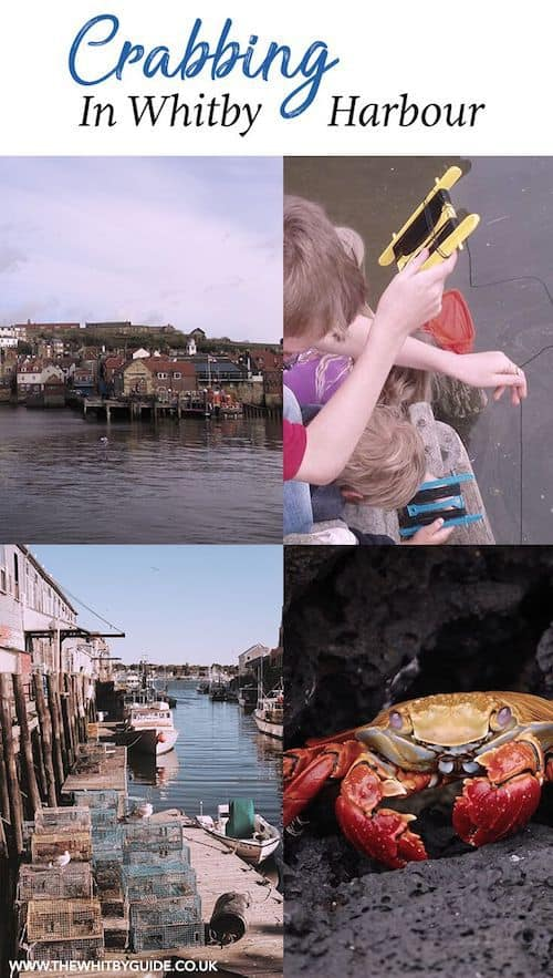 Crabbing in Whitby Harbour; a great family activity. Locals call it 'doggering' - read the article to find out why!