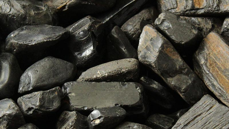 Jet Pieces Found Along The Whitby Coast