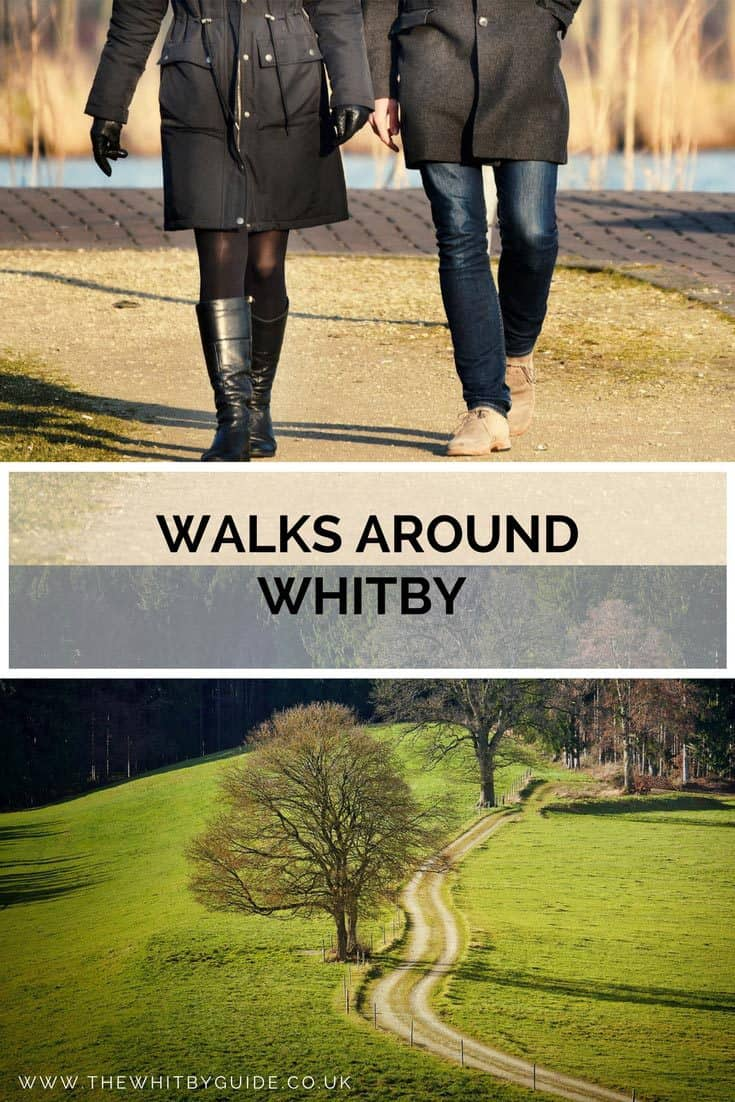 Walks Around Whitby