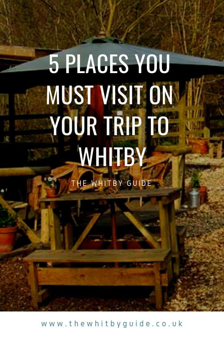 5 places you must visit on your trip to Whitby