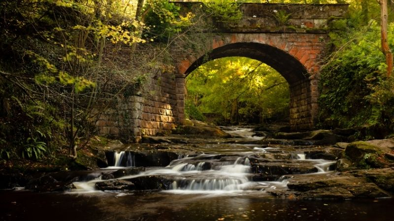 Beck Hole near Whitby is great for dog walks