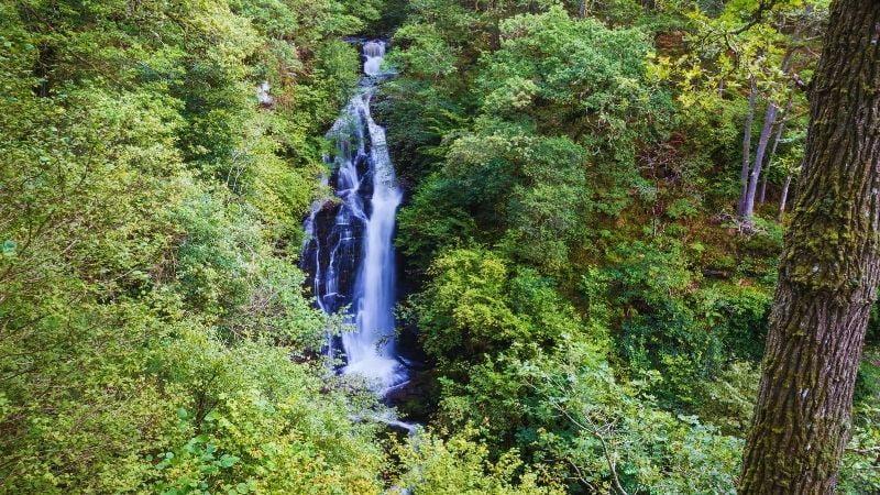 Malayan Spout Waterfall