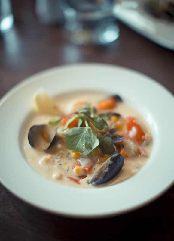 Harry's Famous Chowder; Harry's Bar Review