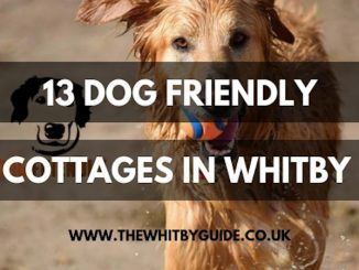 13 Dog Friendly Cottages in Whitby