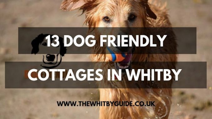 Awe Inspiring Pet Friendly Accommodation Whitby Download Free Architecture Designs Licukmadebymaigaardcom