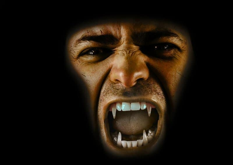Could you survive the terror of the Dracula Experience in Whitby?