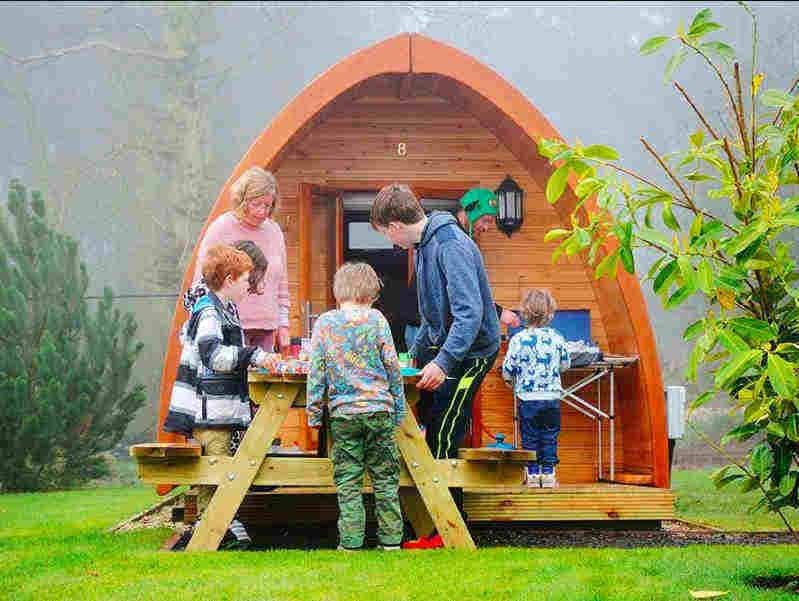 Falcon Forest Glamping; Robin Hoods Bay Camping
