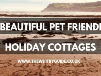 3 Beautiful Pet Friendly Holiday Cottages
