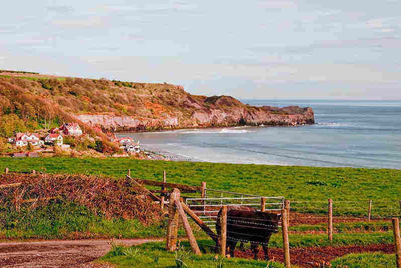 Harness House; School holiday cottages in Whitby