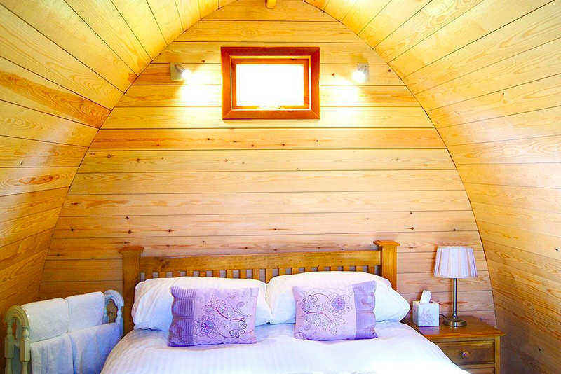 Whitby Camping Pod; Falcon Forest Glamping