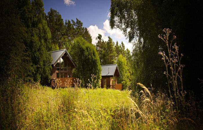 Keldy Forest Cabins; 10 Unique New Year Breaks In The North York Moors