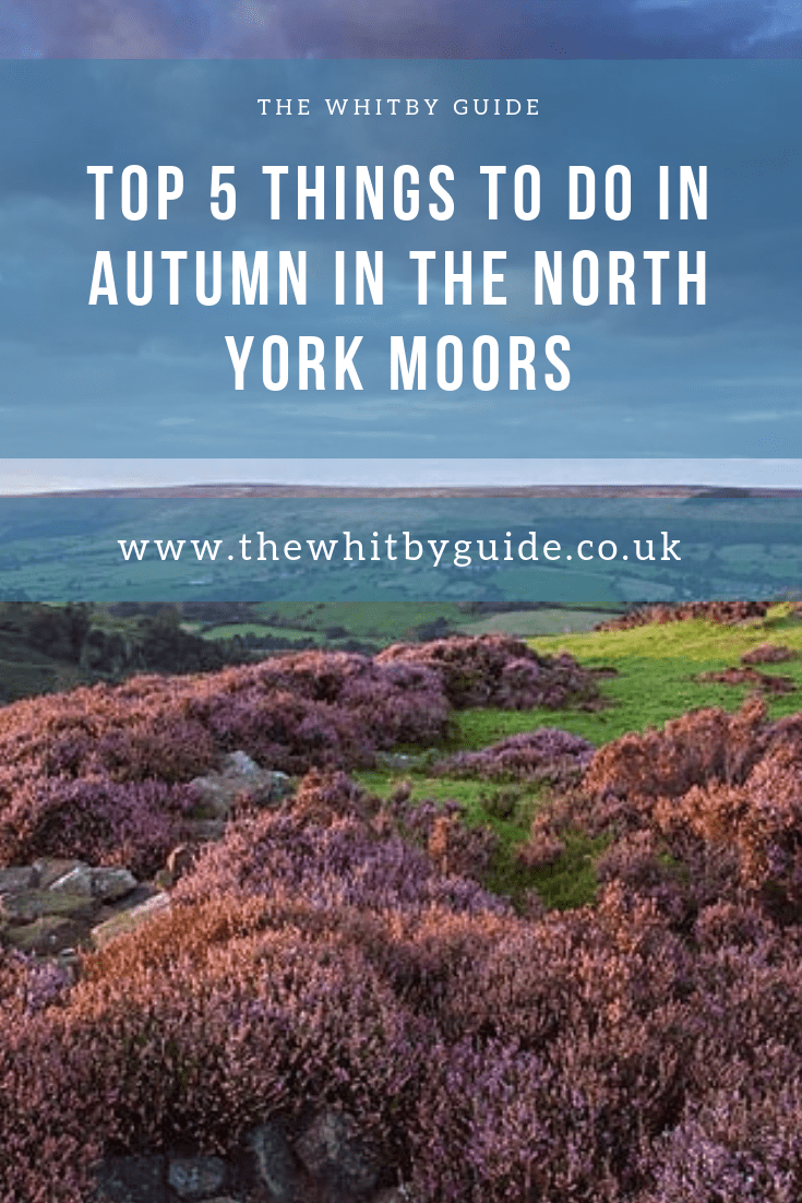 Top 5 Things to Do in Autumn In The North York Moors