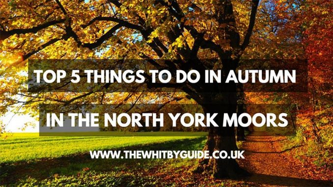 Autumn in the North York Moors
