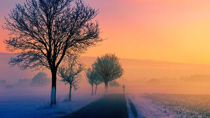 Winter Experiences in North York Moors