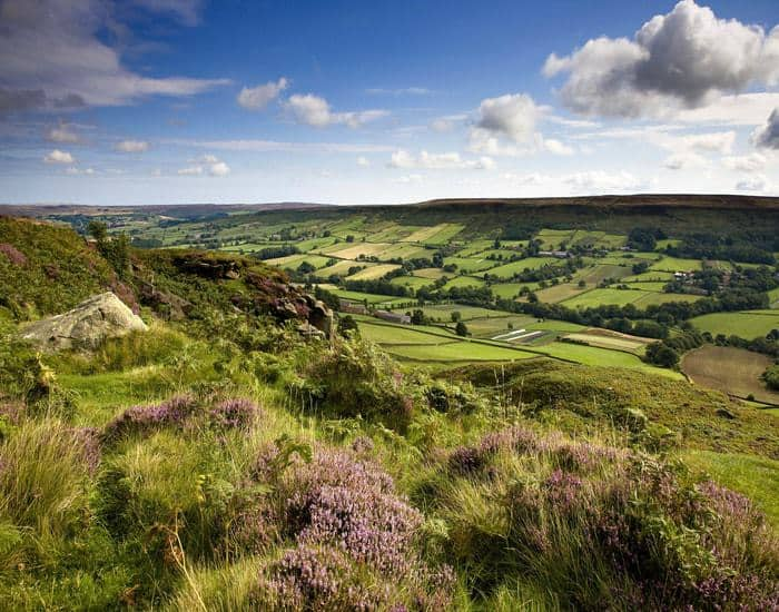 Esk Valley Walk; 10 Stunning Christmas Walks In North Yorkshire For Your Enjoyment