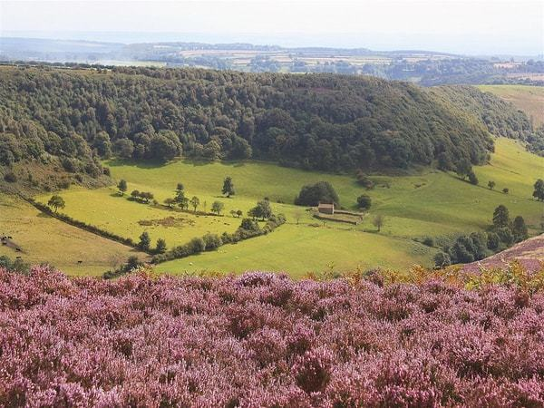 Hole of Horcum; 5 Unique Winter Walks In The North York Moors