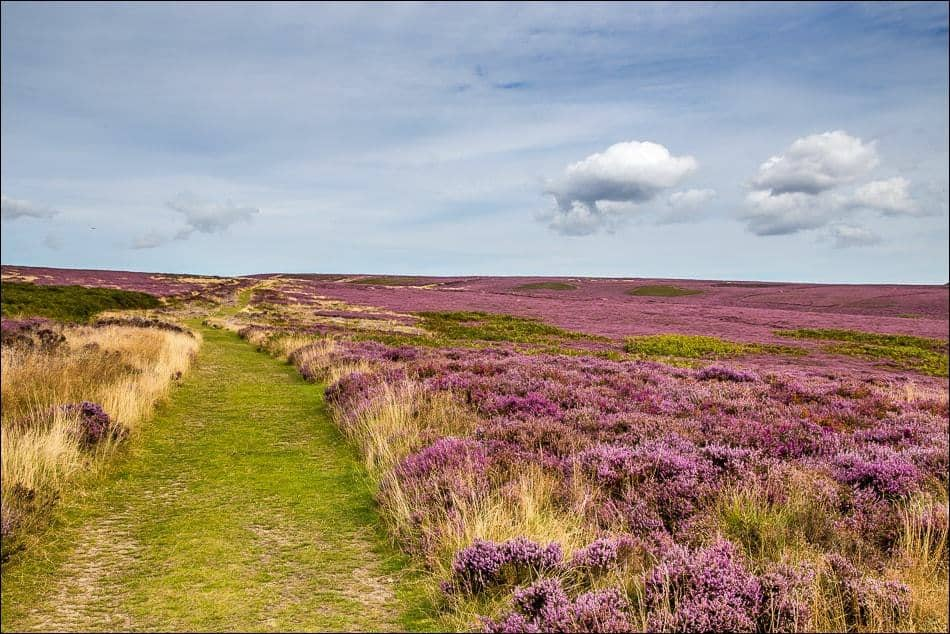 Levisham Moor; 5 Unique Winter Walks In The North York Moors