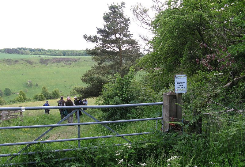 Ellerburn Bank Nature Reserve; Top Attractions on the Yorkshire Coast
