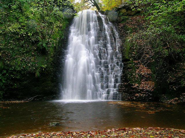 Falling Foss Waterfall; 25 Best Cultural Things To Do in North York Moors National Park