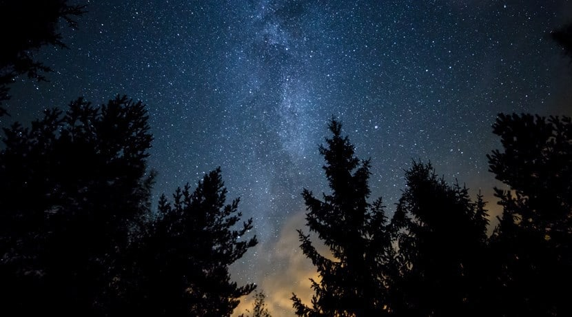 Stargazing at Dalby Forest; What's On In Whitby In January (North York Moors and Yorkshire Coast)