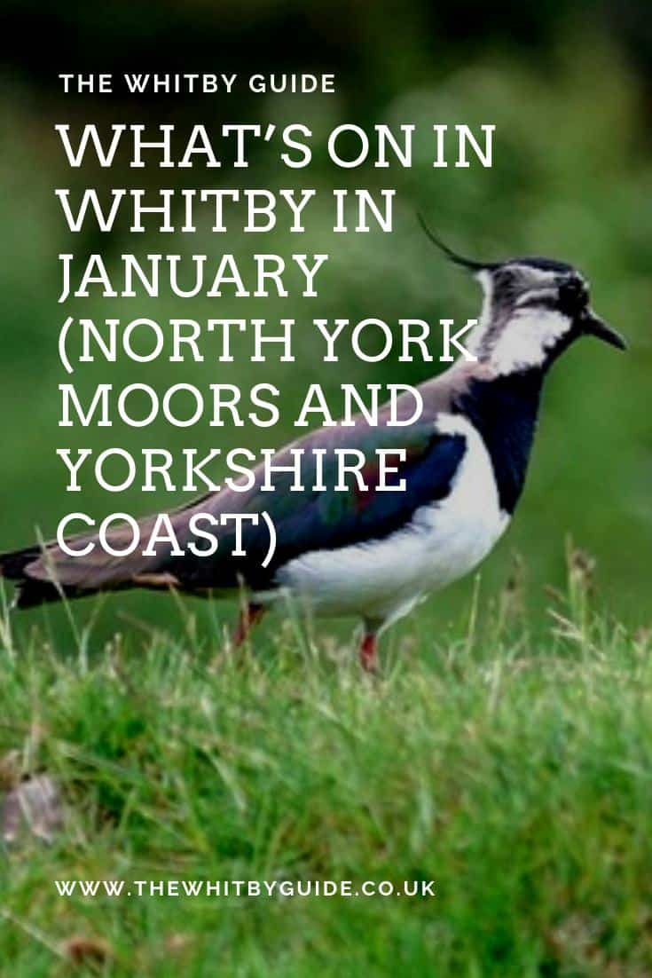 What's On In Whitby In January (North York Moors and Yorkshire Coast)
