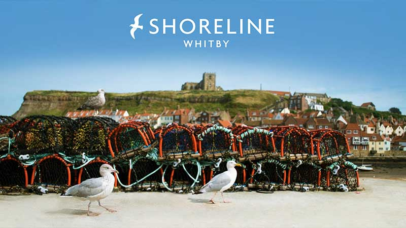 Shoreline Cottages in Whitby