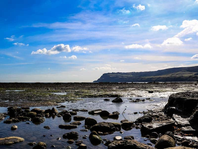 Forage in the Rockpools; 11 Awesome Things To Do On The North Yorkshire Coast