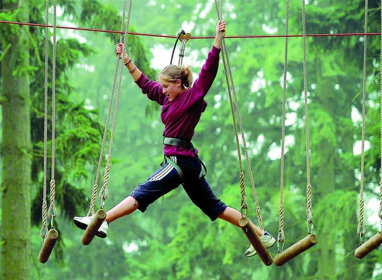 Go Ape; What's On In Whitby In February (North York Moors and Yorkshire Coast)