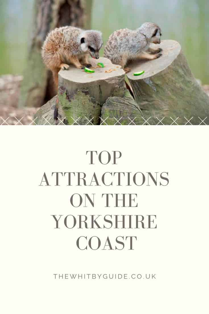 Top Attractions on the Yorkshire Coast