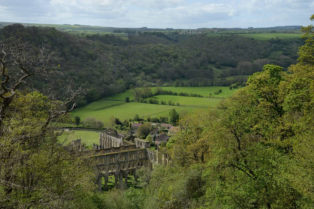 Rievaulx Valley; What's On In Whitby In March plus North York Moors & Yorkshire Coast