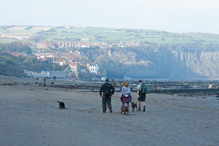 Dog walkers on Robin hood bay beach in whitby
