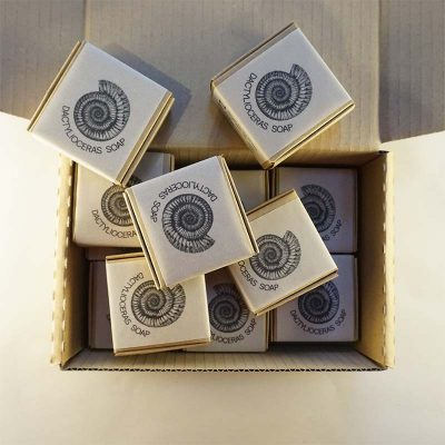 Twelve Whitby Dactylioceras Soaps In Boxes