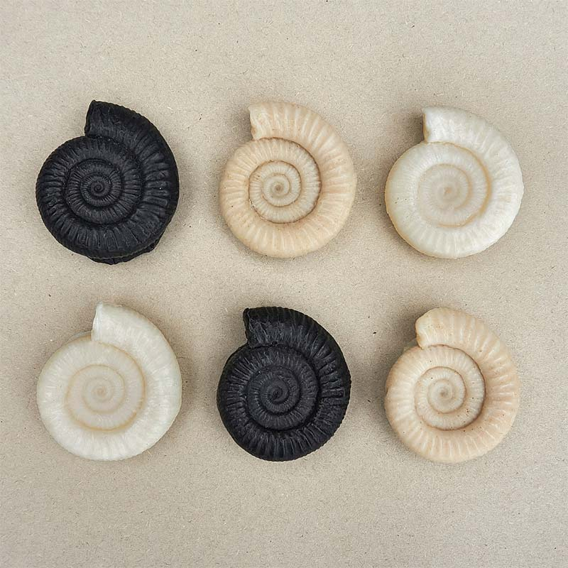 Whitby Ammonite Soaps