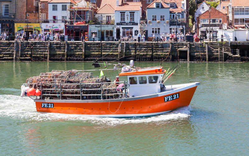 Whitby Lobster Boat