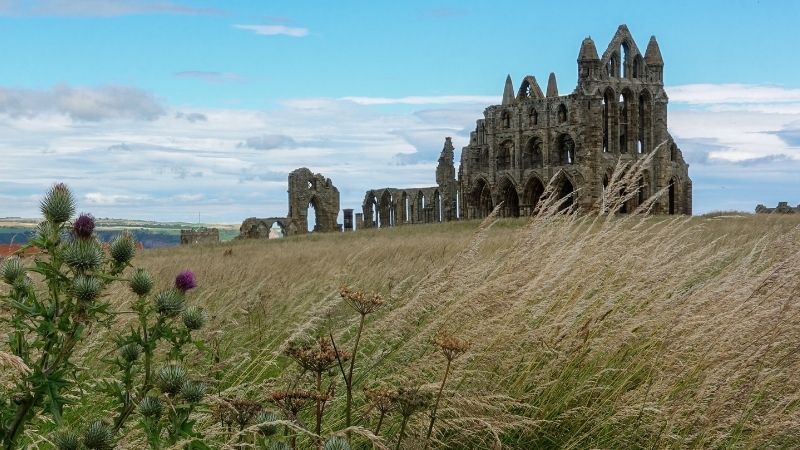 Whitby Abbey connections to Caedmon