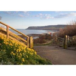 Robin Hoods Bay, Spring Sunshine Canvas