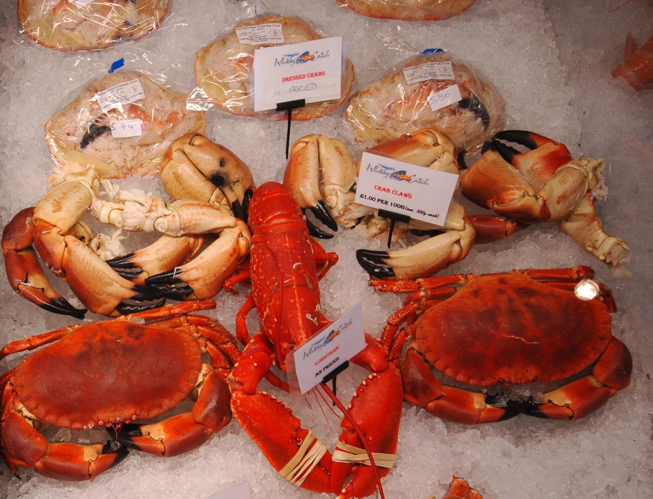 The Whitby Catch Seafood