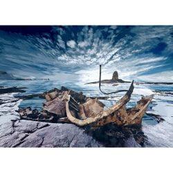 Saltwick Bay 'Shipwreck' Limited Art Print