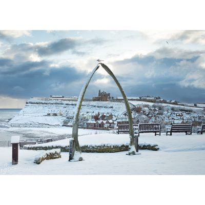 Whitby Whalebones In The Snow Canvas