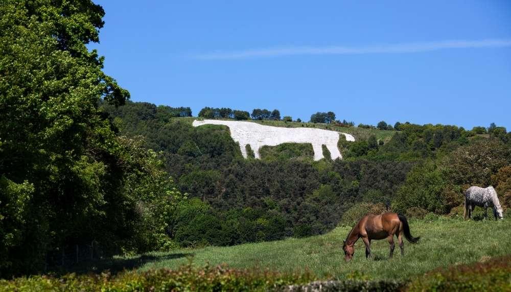 Kilburn White Horse Walk in the North York Moors