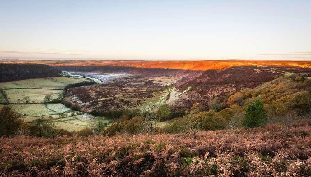 North York Moors in Autumn