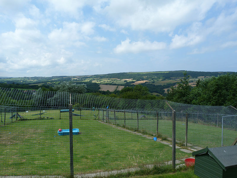 The view from Brackenhill Kennels
