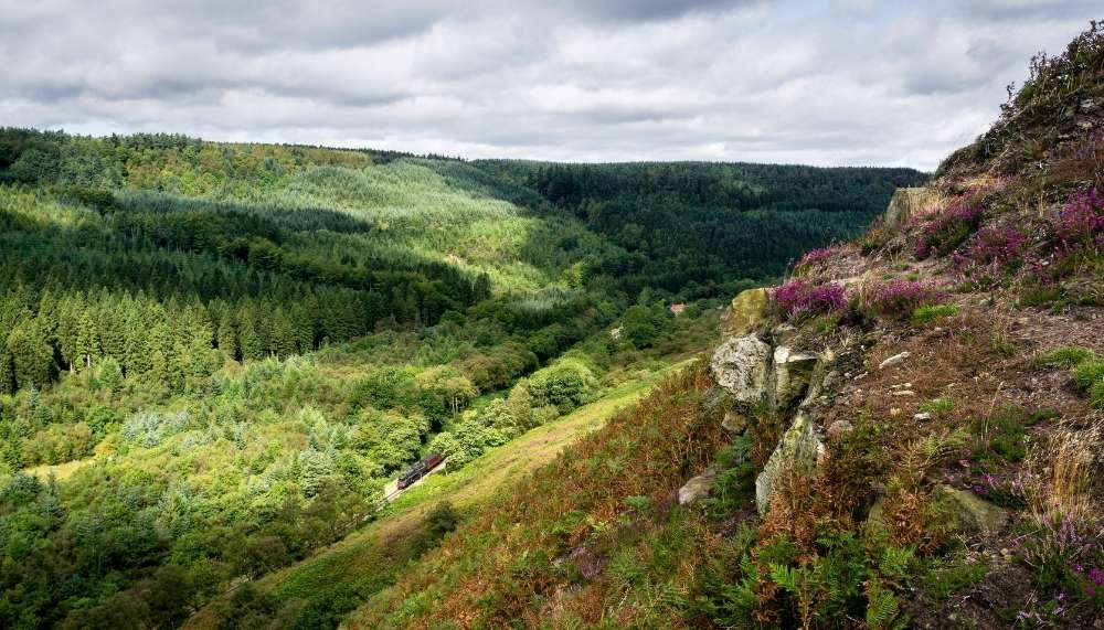 Things to do in North York Moors