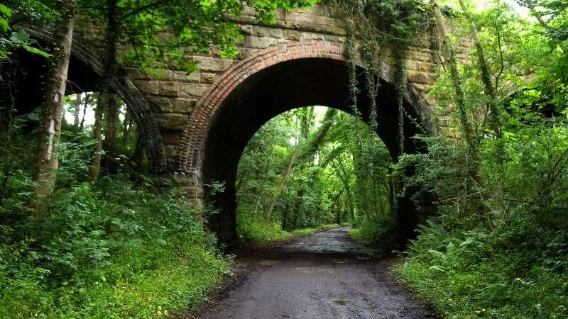 Cinder Trail to Robin Hoods Bay