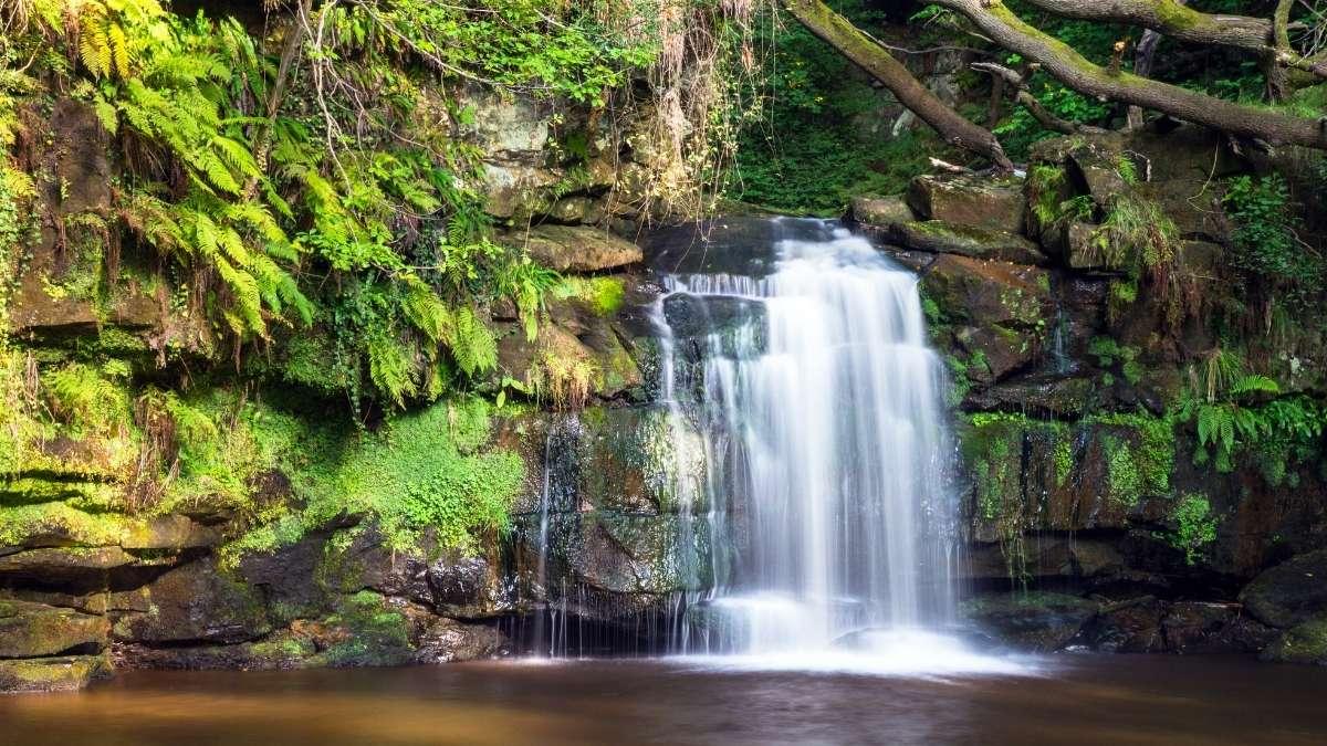 North York Moors Waterfalls