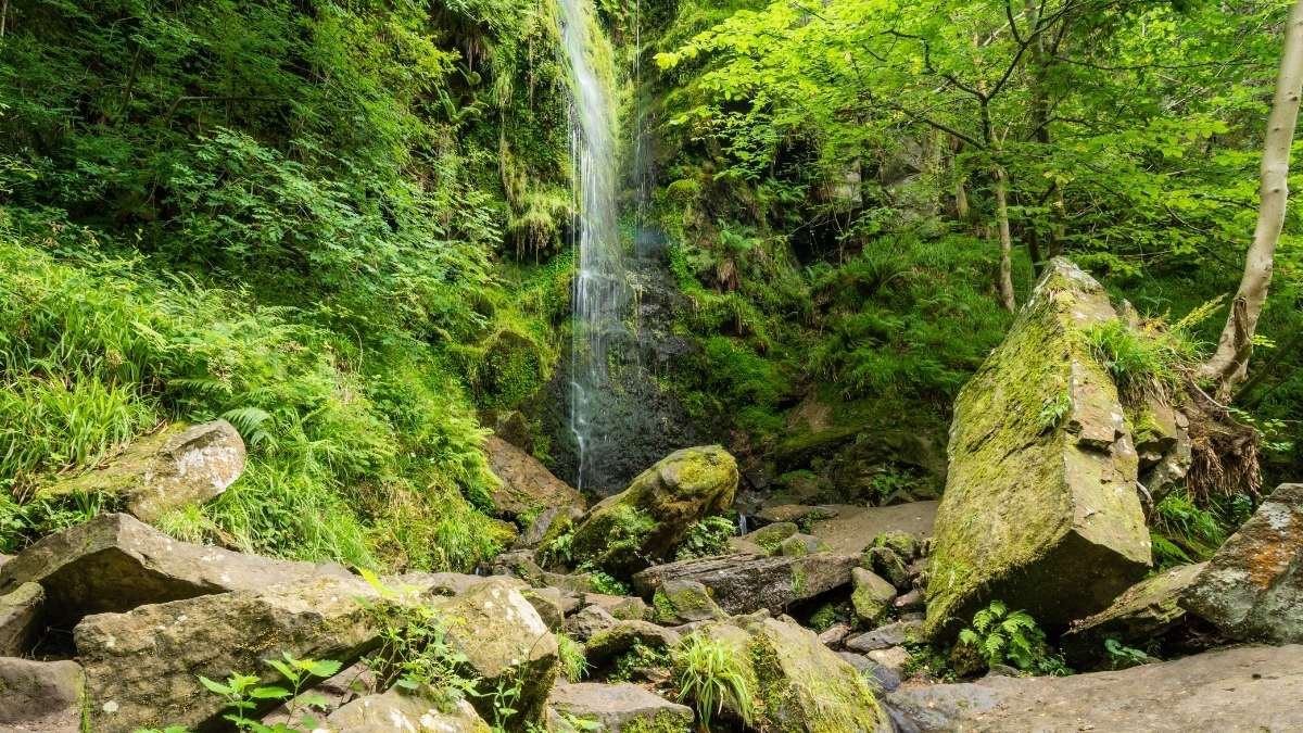 Mallyan Spout waterfall in the North York Moors