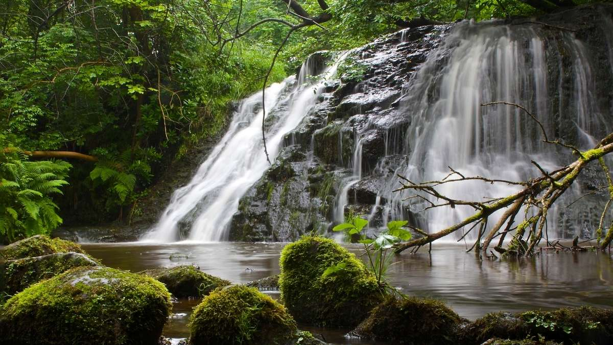 Old Meggison Waterfall